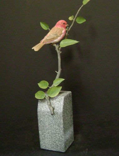 "Steve Schumacher ""Purple Finch"" - #294/35"